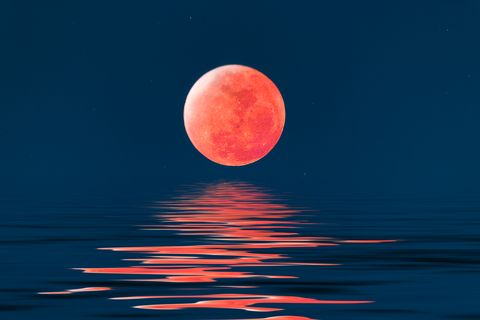 Time to Stand and Stare: Mesmerizing Reflections in Water   Full Moon Reflecting Off Water