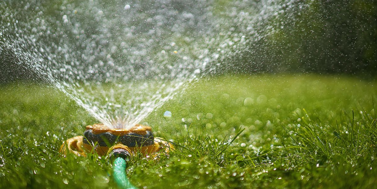 10 best garden sprinklers to keep your lawn and borders watered