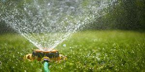Surface level view of backyard sprinkler spraying