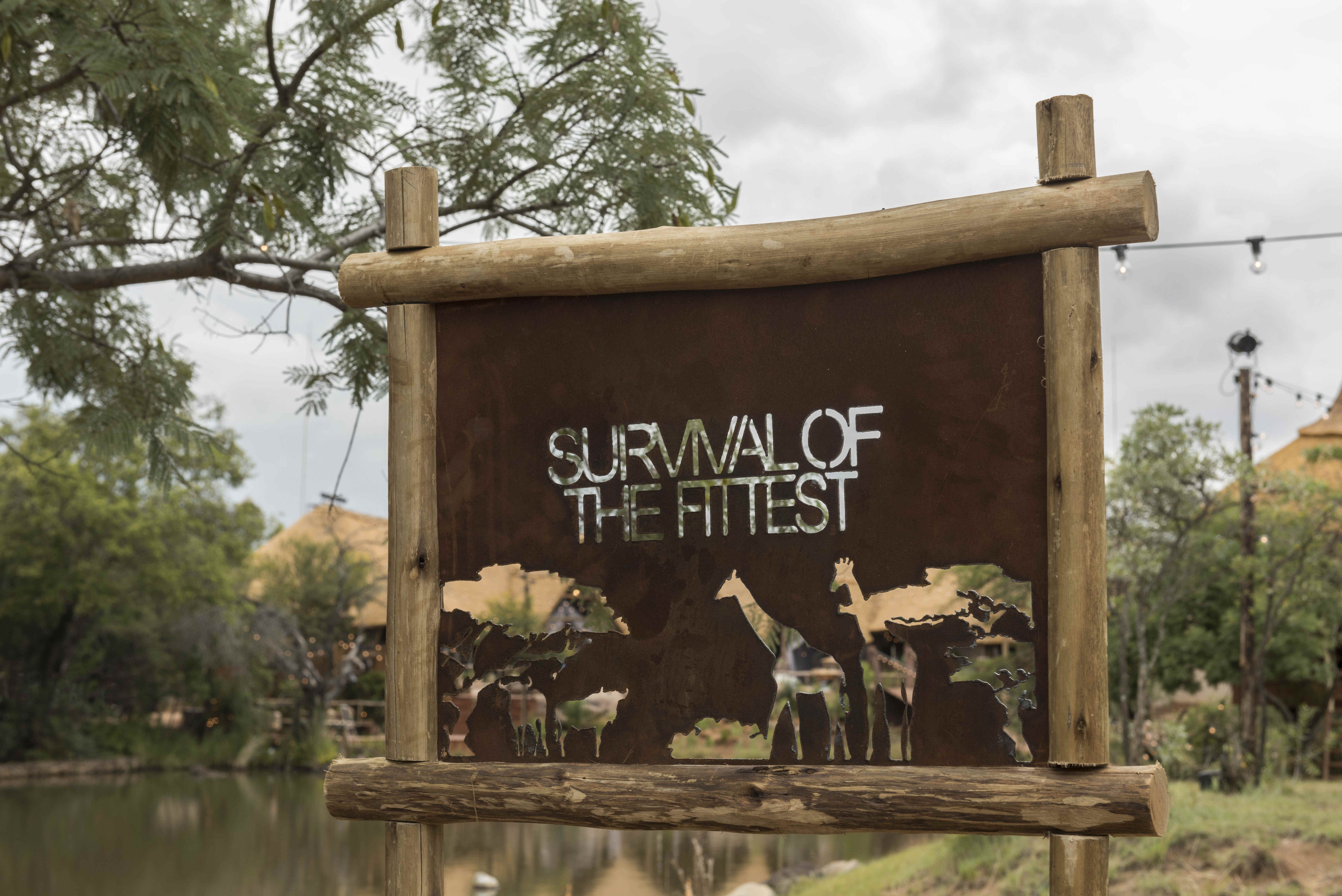 survival of the fittest house