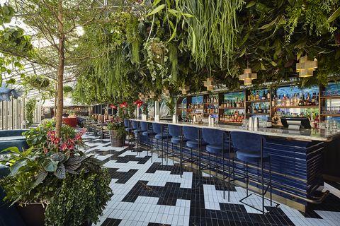 sushi samba covent garden