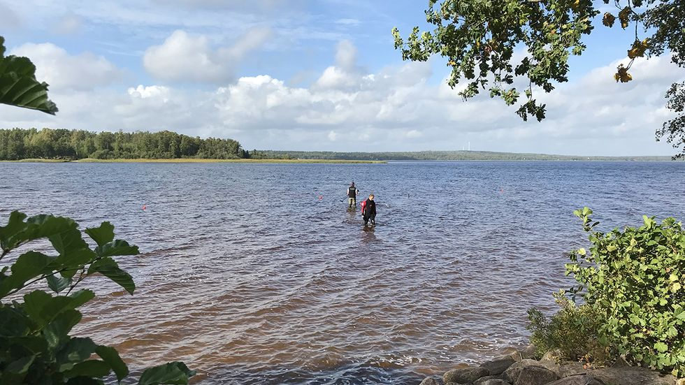 This 8-Year-Old Girl Pulled a 1,500-Year-Old Sword Out of a Lake in Sweden