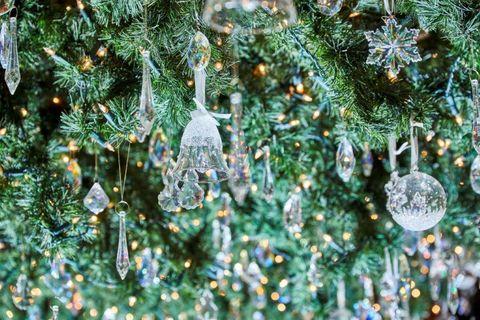Arizona Cypress, Tree, balsam fir, oregon pine, Colorado spruce, Red juniper, Christmas ornament, Juniper, Water, Branch,