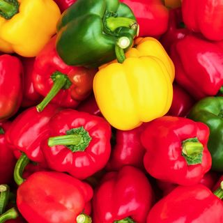 sweet pepper colorful sweet bell peppers, natural background fresh capsicum cooking vegetable salad colorful green , red and yellow peppers paprika