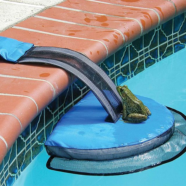 swimline froglog animal escape pool ramp