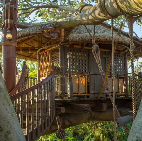 Swiss Family Treehouse at Magic Kingdom