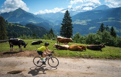 Road cycling through the Swiss Alps.