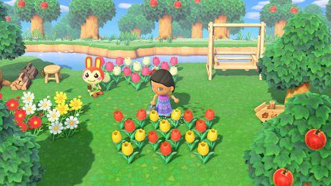Animal Crossing: New Horizons town