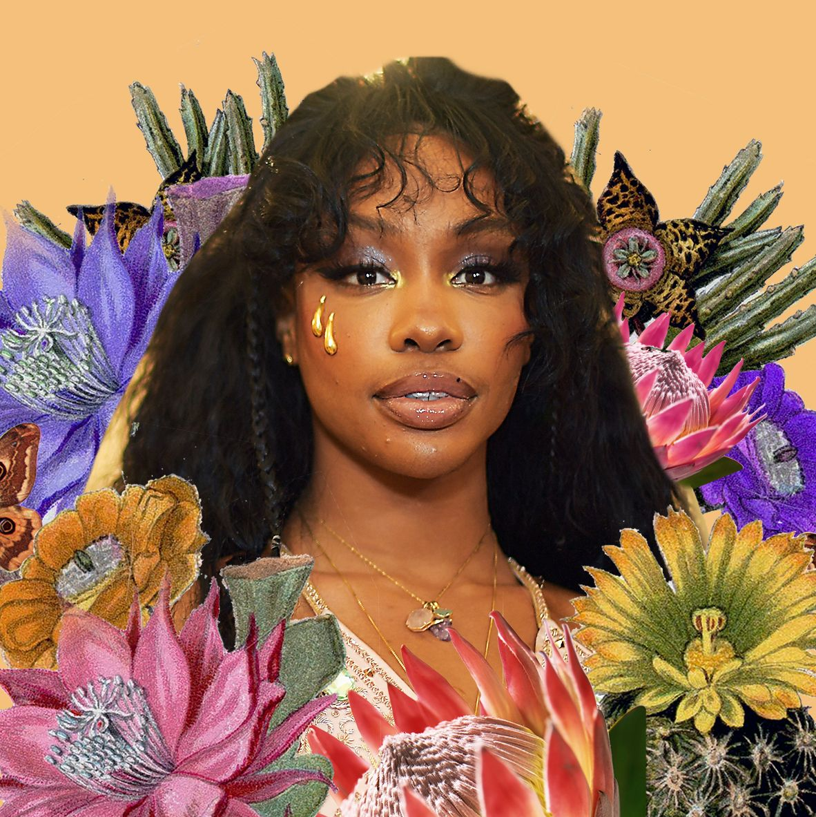 Image result for sza