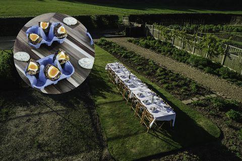 Blue, Table, Grass, Garden, Plant, Flower, Lawn, Wheel, Photography, Furniture,