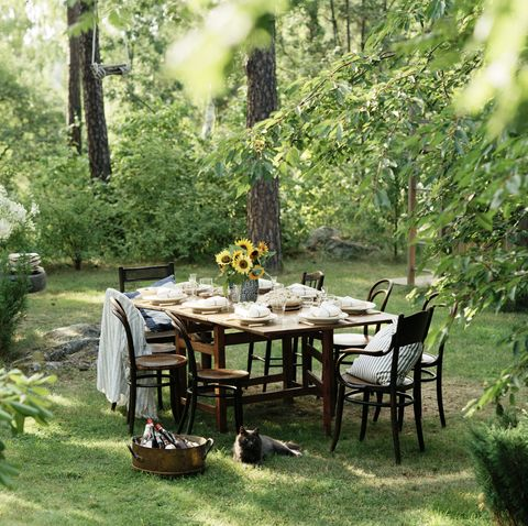 a table set for dinner outdoors