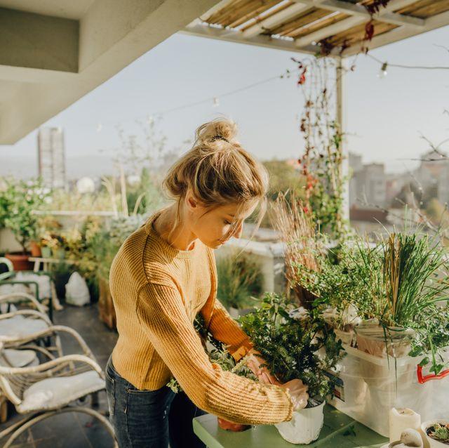 mujer en la terraza cuidando plantas