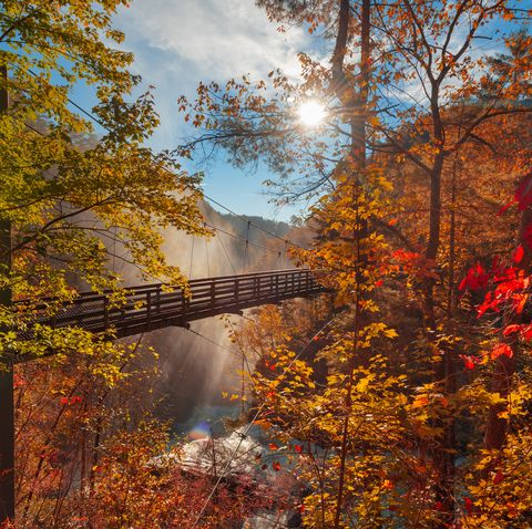 best places to see fall foliage