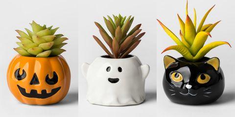 Target Halloween Succulent Planters