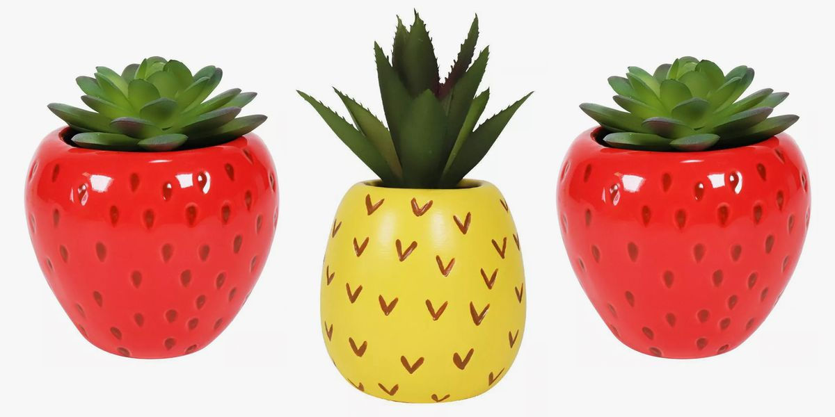 Target's New Pineapple And Strawberry Succulents Will Add A Summer Vibe To Your Space