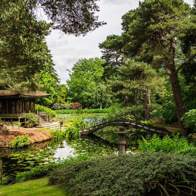 the 10 best national trust gardens for a scenic and socially distanced day out