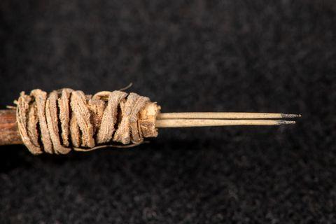 oldest cactus tattoo needle