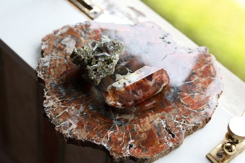 healing crystals taurus petrified wood