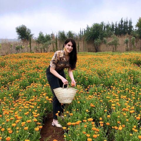 People in nature, Flower, Plant, Meadow, Field, Wildflower, Spring, Flowering plant, Farm, Crop,