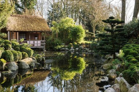 Natural landscape, Nature, Pond, Garden, Vegetation, Botanical garden, Nature reserve, Watercourse, Tree, Botany,