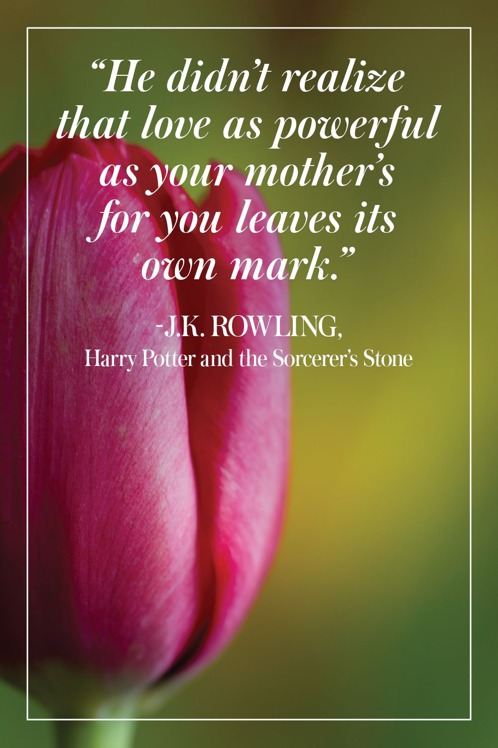 """""""He didn't realize that love as powerful as your mother's for you leaves its own mark."""" - J.K. Rowling, Harry Potter and the Sorcerer's Stone"""
