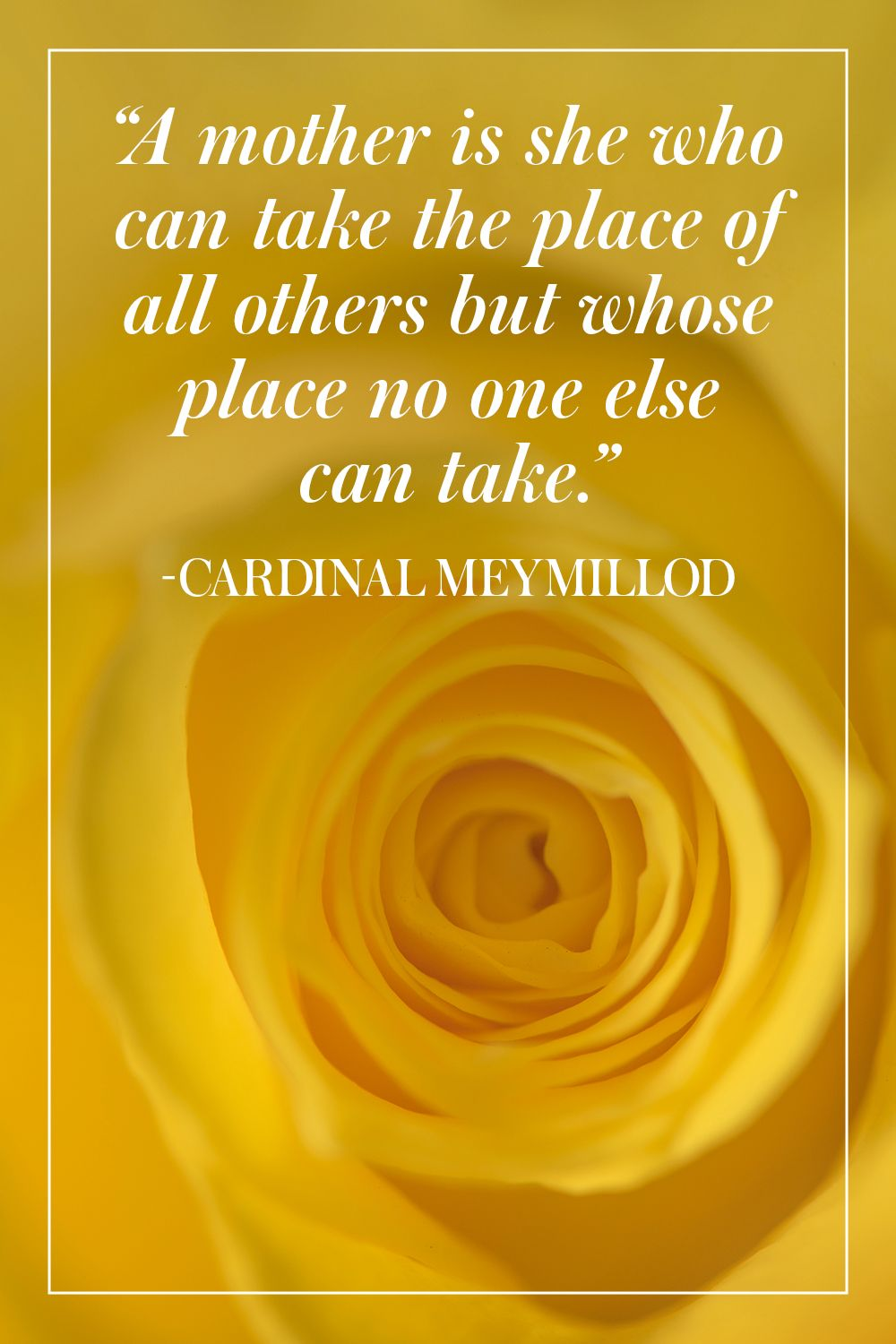 """""""A mother is she who can take the place of all others but whose place no one else can take."""" - Cardinal Meymillod"""