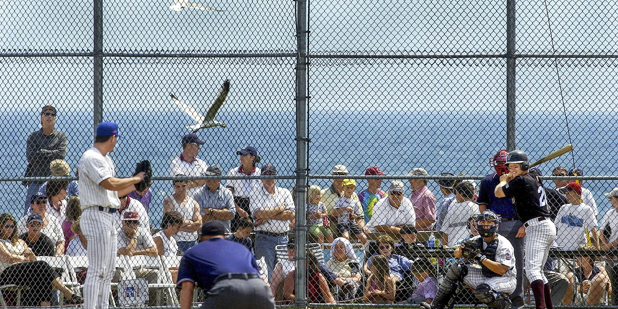 Top amateur baseball tournments