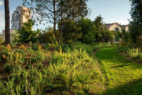 public gardens luma bas smets