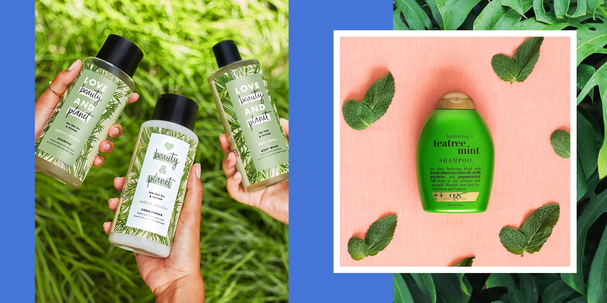 10 Best Tea Tree Oil Shampoos For Cleaner Hair In 2020