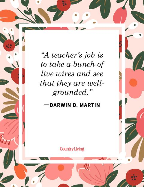 teacher quote darwin martin