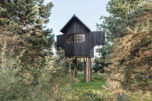 el arquitecto japonés terunobu fujimori instaló su última casa de té ambiental en un árbol en la isla de los museos hombroich, en alemania