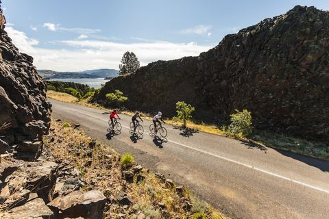 How Many Miles Did You Contribute to the 5.6 Billion Logged on Strava This Year?