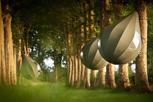 teardrop shaped tents hanging from trees