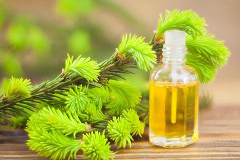 Tea Tree Oil Remedy