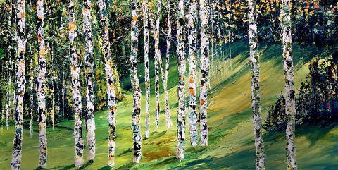 Tree, Canoe birch, Birch, Plant, Woody plant, American aspen, Grass, Birch family, Forest, Flower,