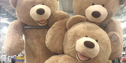 Costco Is Selling An 8-Foot Teddy Bear To Keep You Company This Winter
