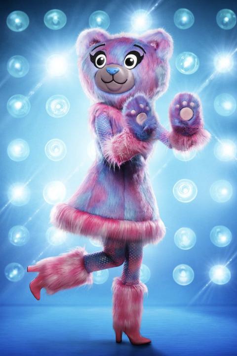 teddy costume