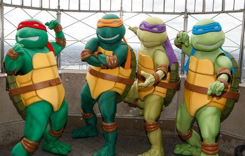 teenage mutant ninja turtles light the empire state building