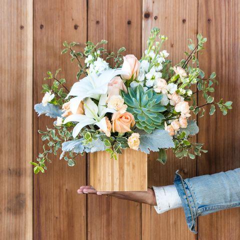 Teleflora Succulent Bouquet