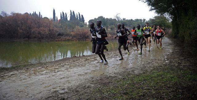 varios atletas africanos y europeos corren en el cross de itálica de sevilla en 2012