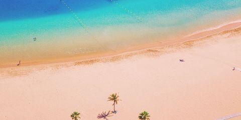 Sand, Sky, Landscape, Summer, Desert, Vacation, Plant, Sea, Aeolian landform, Illustration,