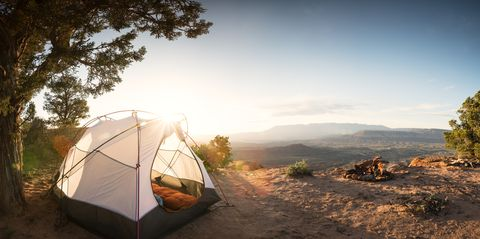 Tent Camping Under a Pinon Tree in the Desert, First Morning Light and a Campfire