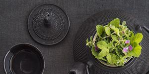 Herbal tea recipe restaurant Terra