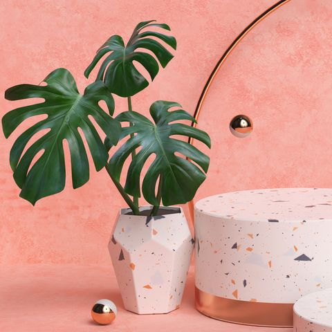 terrazzo and gold pedestal steps on pastel background with monstera plant leaves, three cylinderical platforms, abstract minimal composition, blank space 3d rendering
