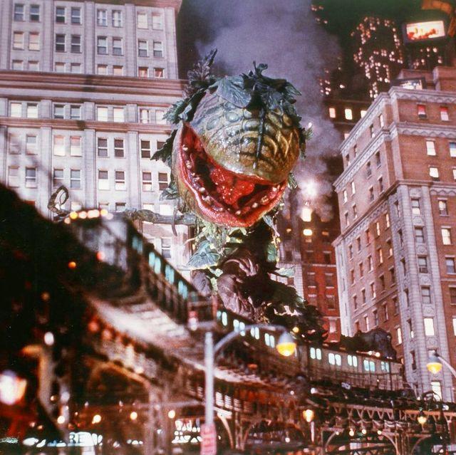 la planta audrey arrasando en la ciudad en el final alternativo de la tienda de los horrores