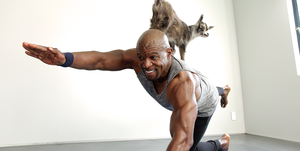 terry crews goat yoga questions