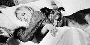 Brigitte Bardot door fotograaf Terry O'Neill