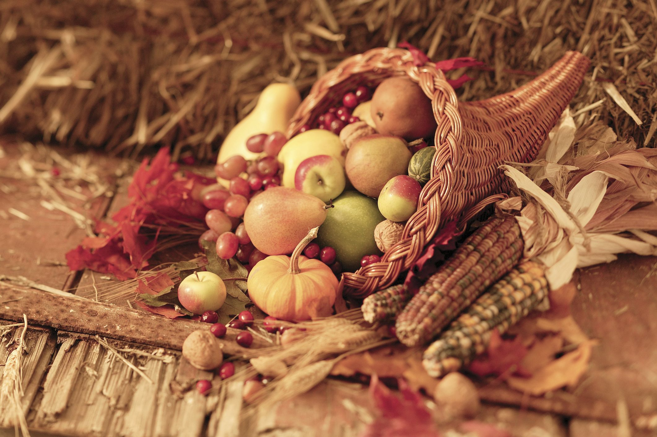 Thanksgiving Cornucopia Meaning: Why Is the Horn of Plenty a Symbol of Thanksgiving?