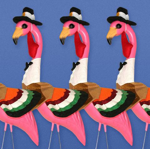 Thanksgiving Flamingo