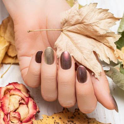 female hand with dark red nail design brown nail polish manicured hand woman hand hold yellow autumn leaf